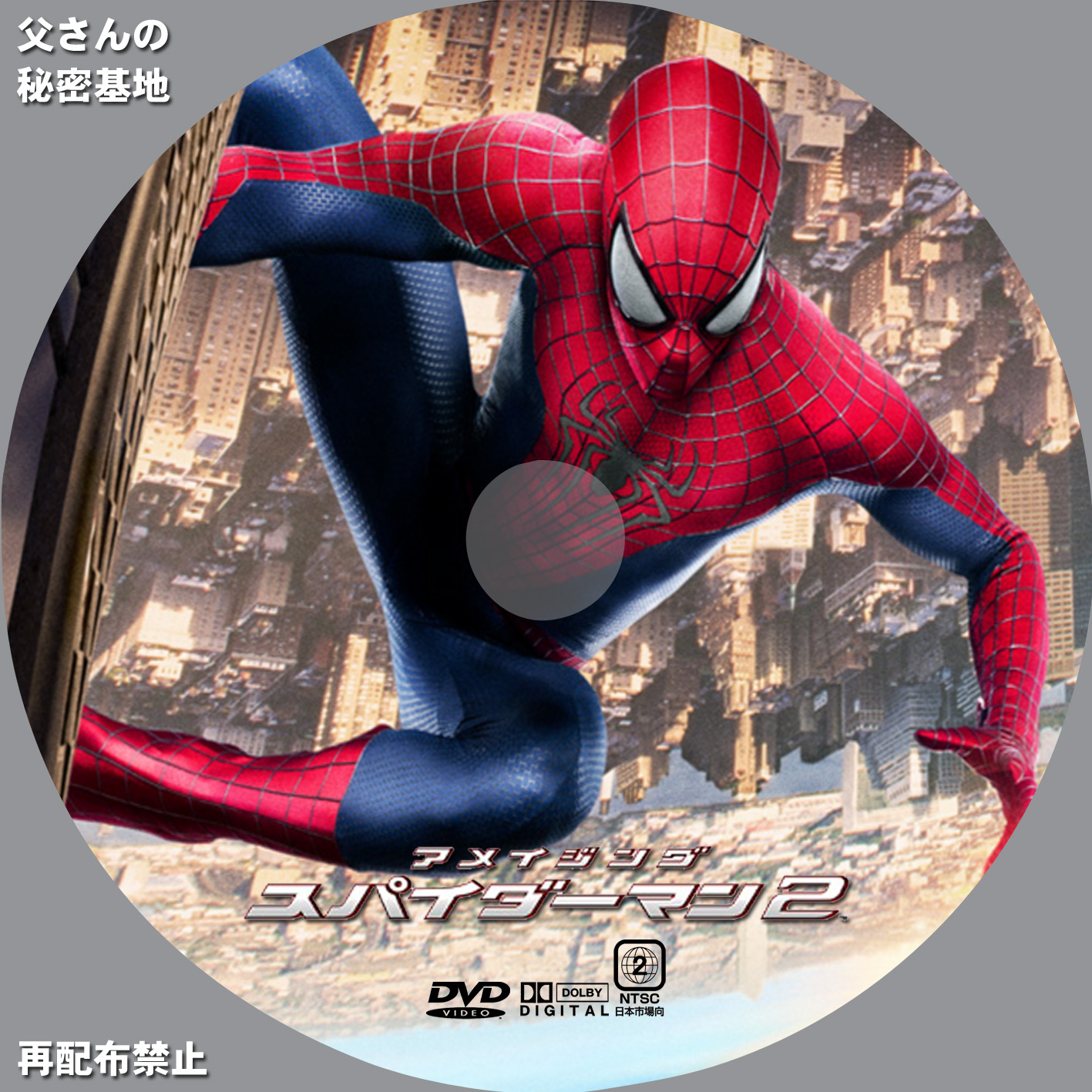 amazing-spiderman2DVD_a.jpg