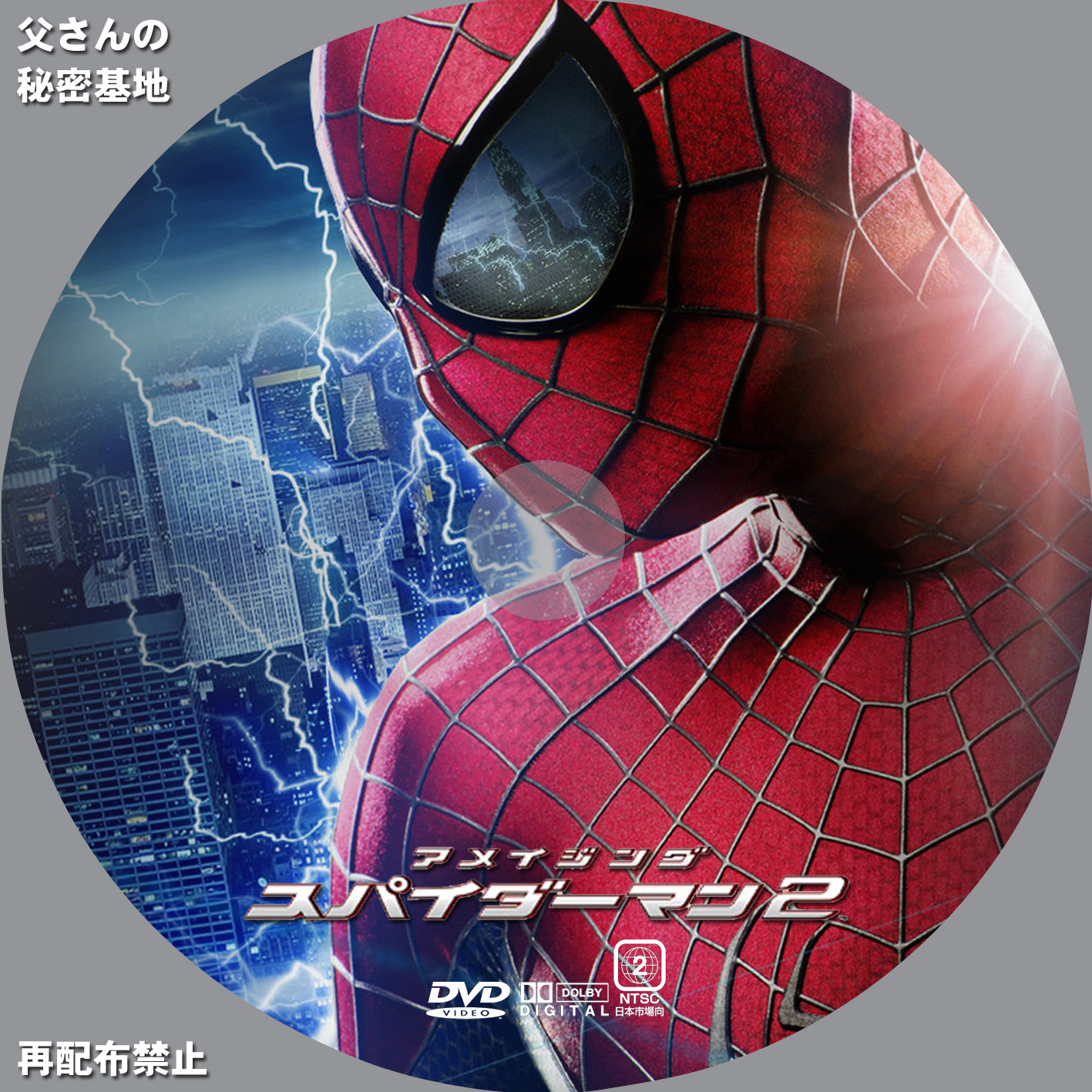 amazing-spiderman2DVD_b.jpg