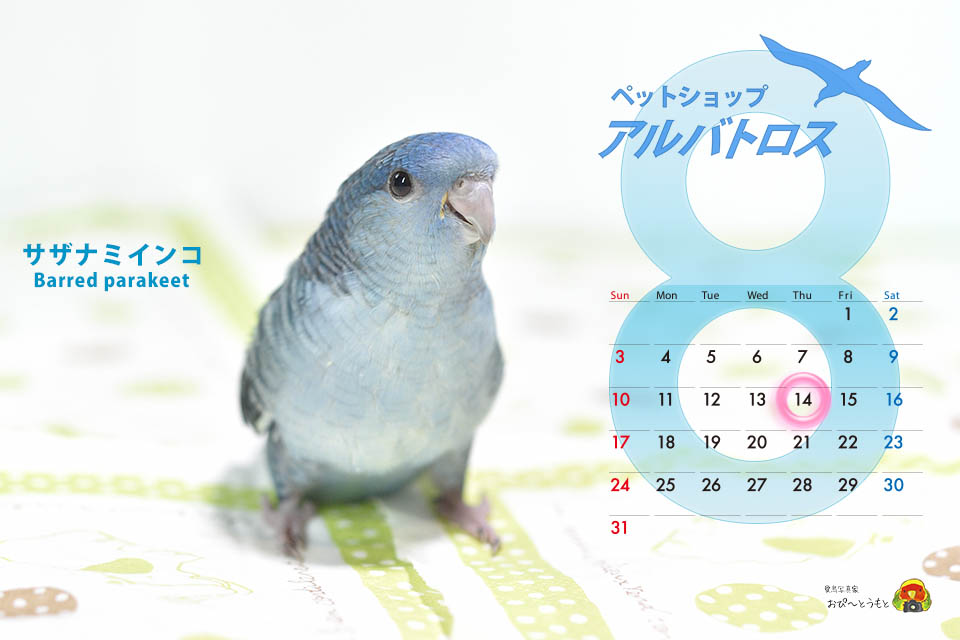 2014-08月定休日