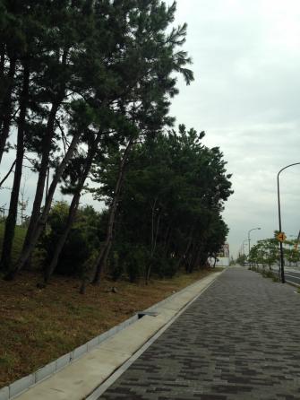 IKEAへの道