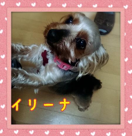 2014-06-11-23-36-56_deco.jpg