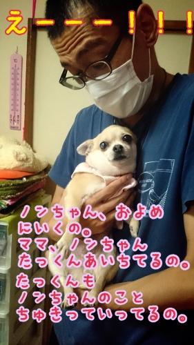 2014-07-13-14-27-57_deco.jpg