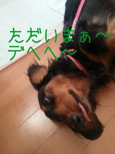 201405200116035b1.jpg