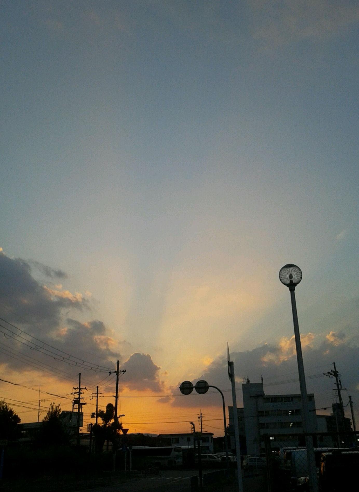 20140725a.jpg