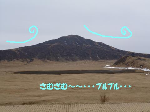 P1020604_convert_20140310132110.jpg
