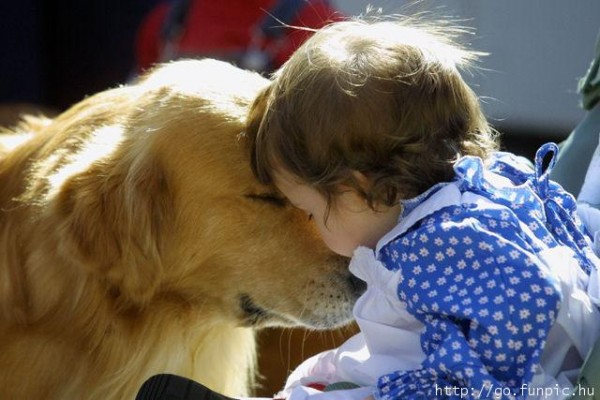 Baby-Kiss-Dog-600x400.jpg