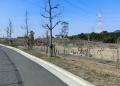 2014/2/23長野緑地