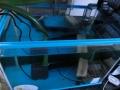 餌付け水槽の濾過槽