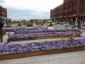 flower_garden4.jpg