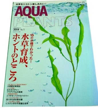 aqua plants2014 vol11