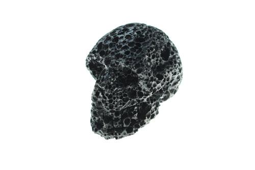 skull1_3.jpg