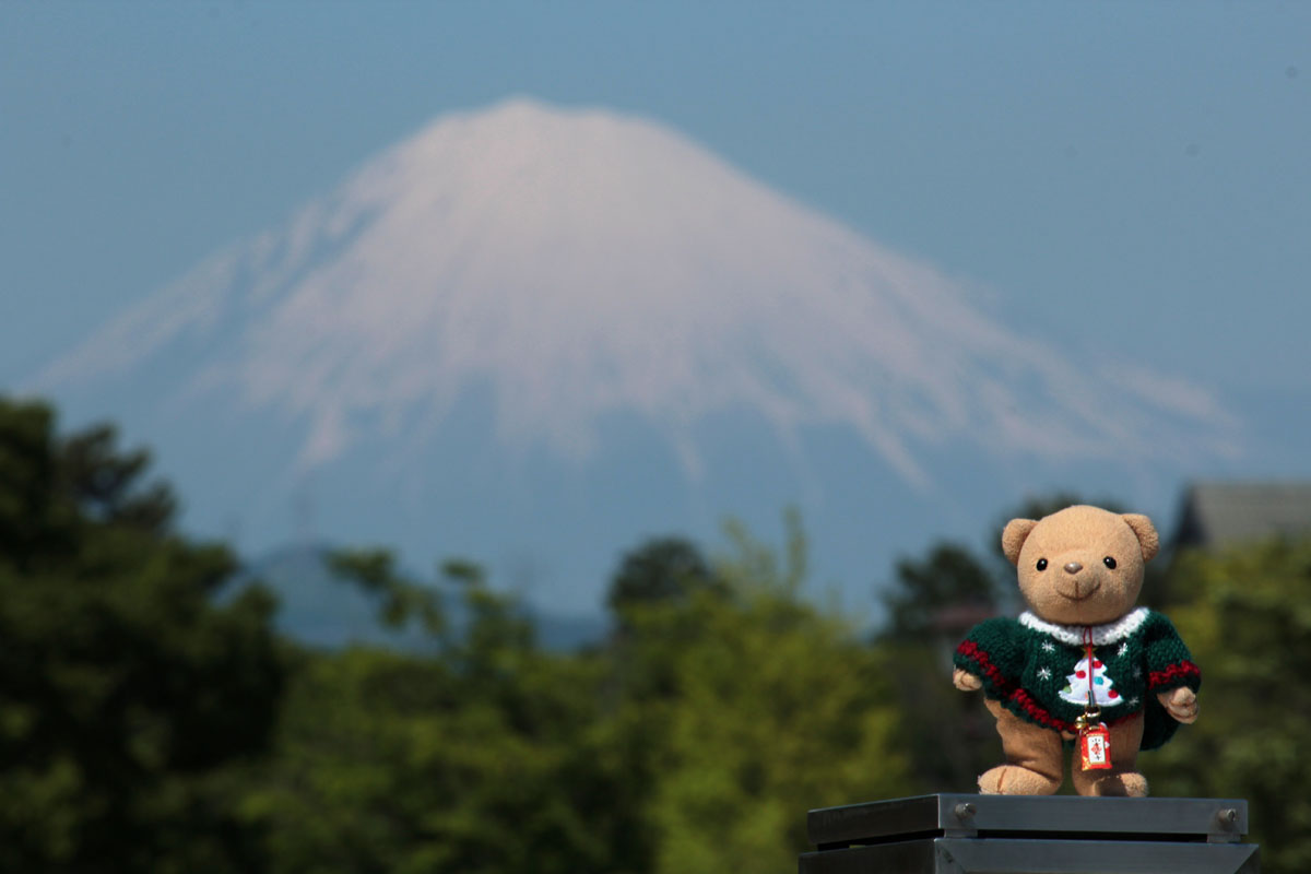 富士山と 富士見芝生広場で 140511