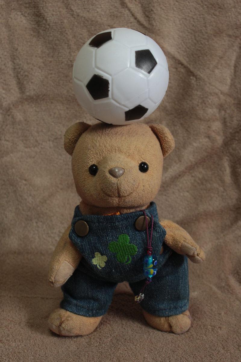 サッカーボールと戯れる e