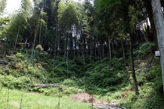 島田市中央公園の吊橋