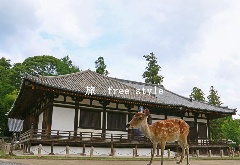 東大寺 三月堂 鹿