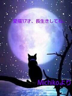 20140811_110154.jpg