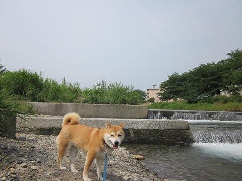 14梅雨2