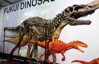 ハンズB2C恐竜02