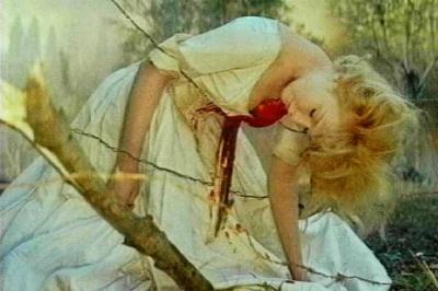 血とバラ3R