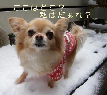 blog2014021402.jpg