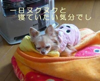 blog2014021501.jpg