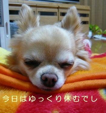 blog2014022102.jpg