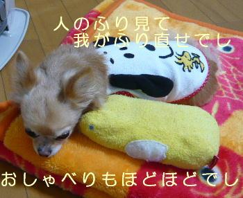 blog2014022501.jpg
