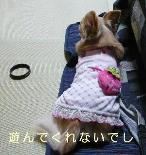 blog2014022703.jpg