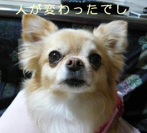 blog2014030203.jpg