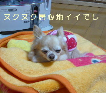 blog2014030406.jpg