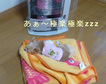 blog2014030601.jpg