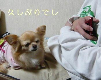 blog2014031203.jpg