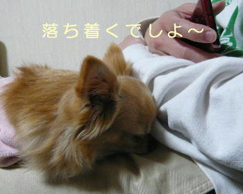 blog2014031204.jpg