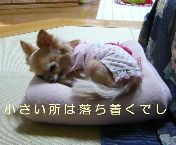 blog2014031501.jpg