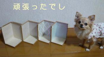 blog2014031603.jpg