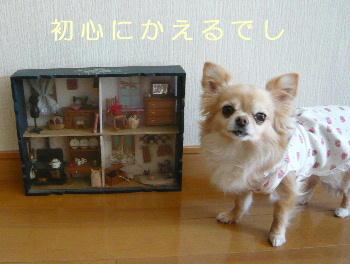 blog2014031701.jpg