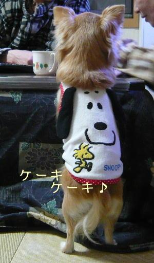 blog2014031708.jpg