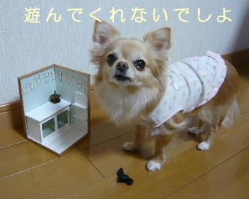 blog2014032102.jpg