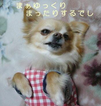 blog2014032201.jpg