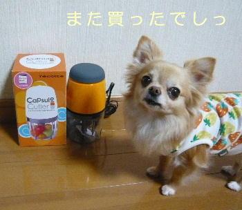 blog2014032602.jpg