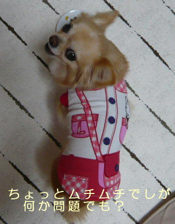 blog2014032804.jpg