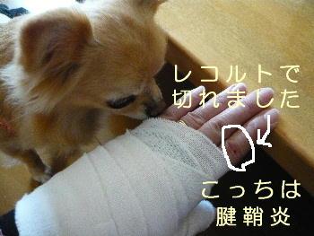 blog2014033103.jpg