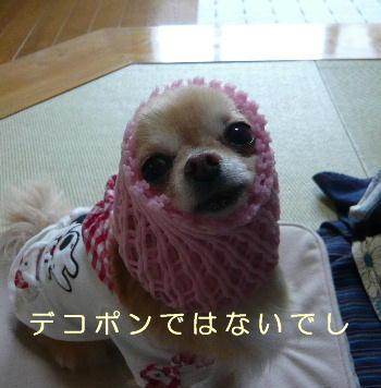 blog2014040101.jpg