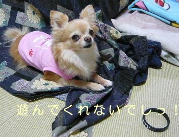 blog2014040305.jpg
