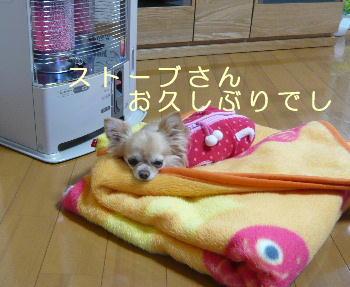 blog2014040501.jpg
