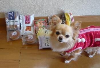 blog2014040603.jpg
