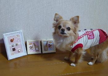 blog2014040705.jpg