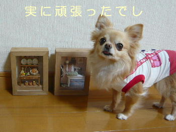 blog2014040803.jpg