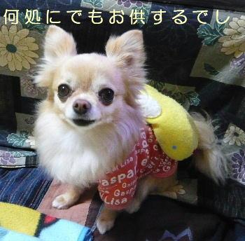 blog2014042204.jpg