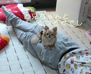 blog2014042401.jpg
